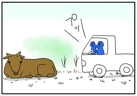 18 牛が道を塞ぐ 5
