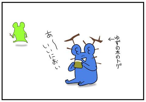 H30.11.8 柚子胡椒 5