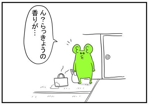 H30.6.18 らっきょう 4