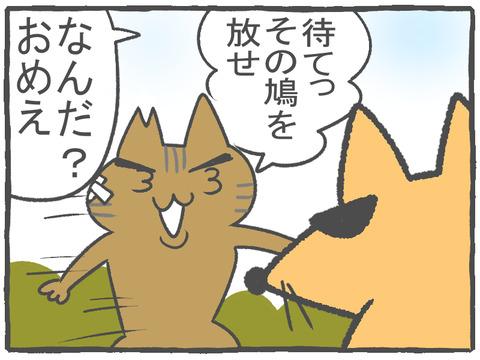 R2.10.22 ハトぱっぱ26 1