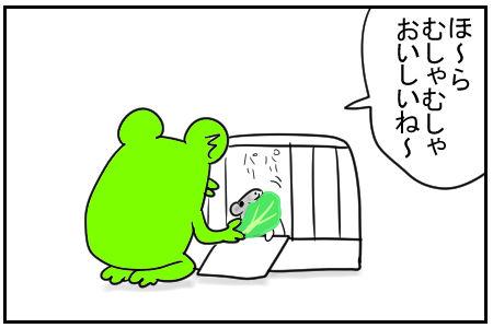 9 牛ちゃんぴーぴー 3