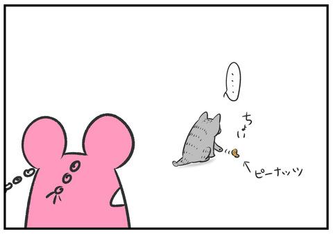 H30.8.23 ネコと遊ぶ子どもたち 9