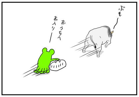 1 闘牛 4