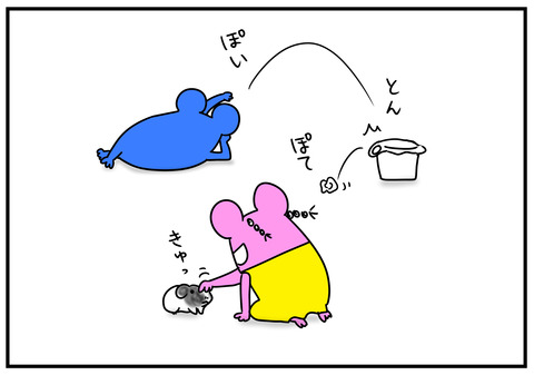 11 モルモット牛ちゃん 4