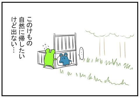 H30.10.28 砂防ダムのイノシシを見て義父の一言 4