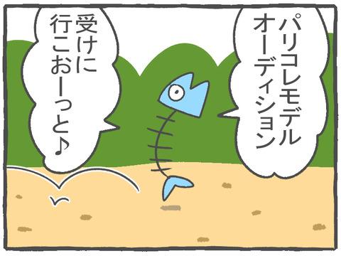 R2.10.22 ハトぱっぱ24 1