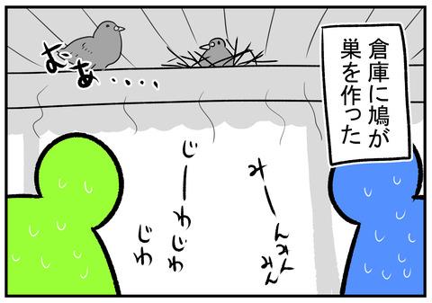 H30.7.25 鳩の巣 1