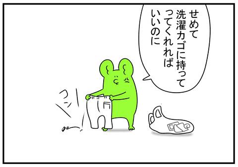R1.6.19 ミニマリスト 3