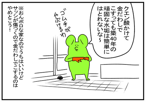 R1.11.8 カネダワシ 2