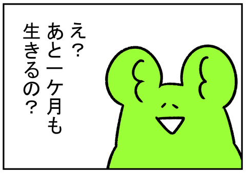 H31.3.31 新元号まで 2