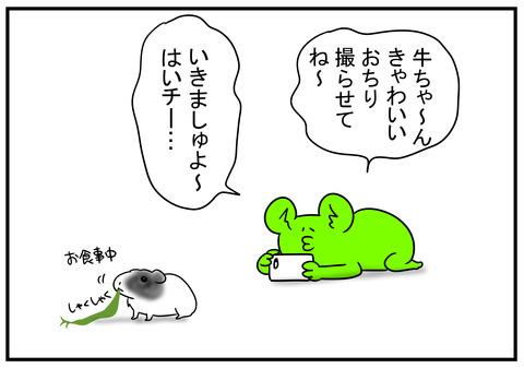 1 闘牛 1