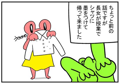 H30.12.27 墨 落とし方 服  1