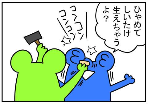 23 椎茸の種駒 6