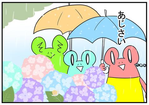H30.6.16 梅雨 1