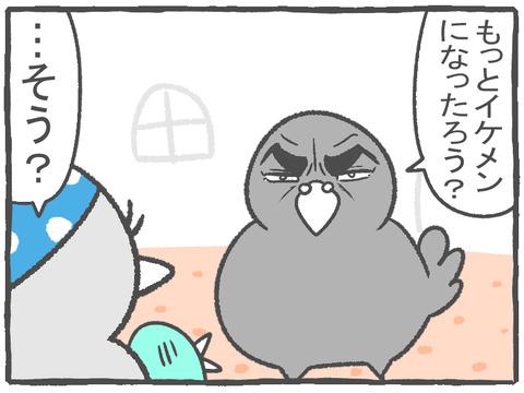 R2.10.16 ハトぱっぱ20 2