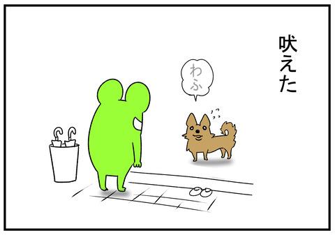R1.1218 犬もかわいい 6