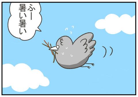 ハト漫画1-1