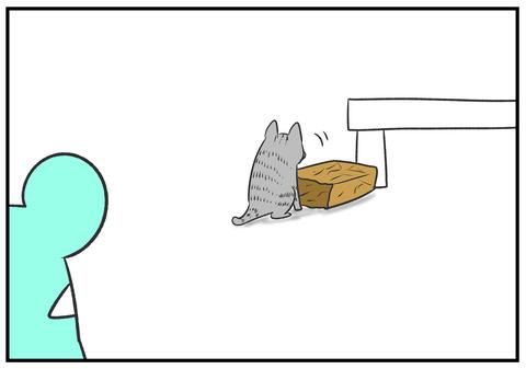 H30.8.23 ネコと遊ぶ子どもたち 5