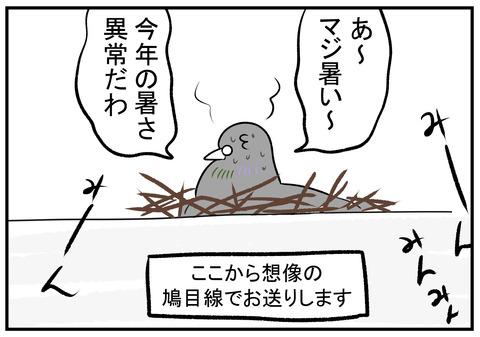 H30.7.25 鳩の巣 4