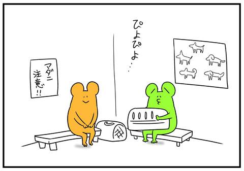 H31.2.12 ひよこ 2
