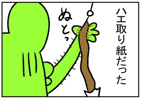 R1.9.6 ハエ取り紙 3