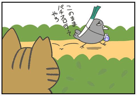 R2.9.17 はとパッパ 鴨ネギ 4