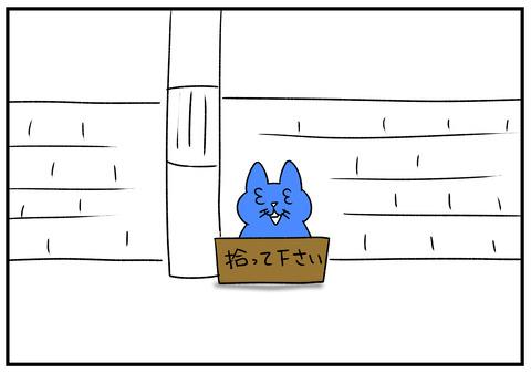 R1.12.11 猫には何されてもいい 7