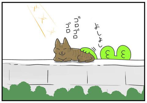R2.2.25 猫のおならがくさい 3