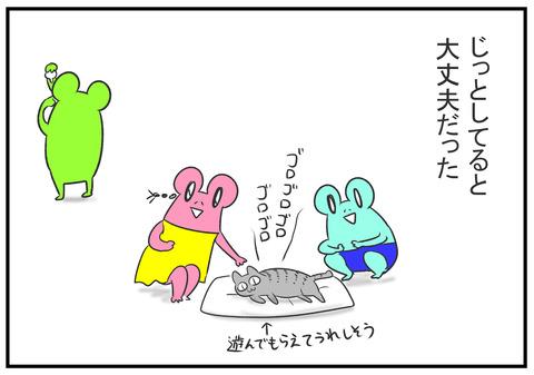 H30.8.23 ネコと遊ぶ子どもたち 12
