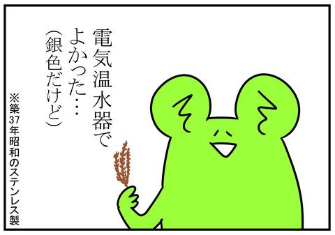 862秋…杉の葉といえば 9