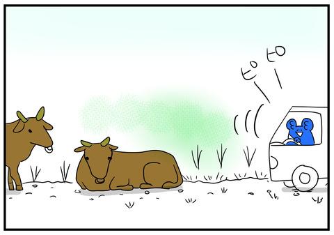 18 牛が道を塞ぐ 7