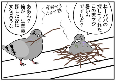 H30.7.25 鳩の巣 5