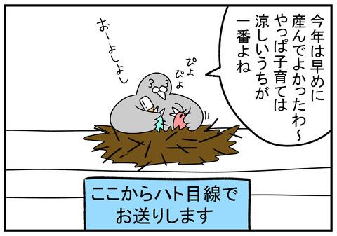 R1.6.3 ピジョンミルク 3