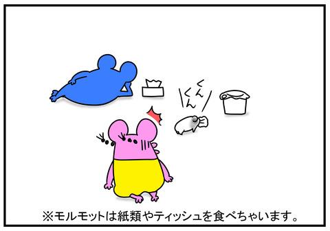 11 モルモット牛ちゃん 6