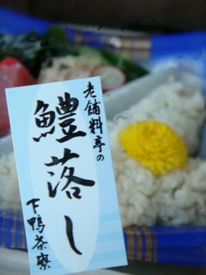 shimogamo20080723-002.JPG