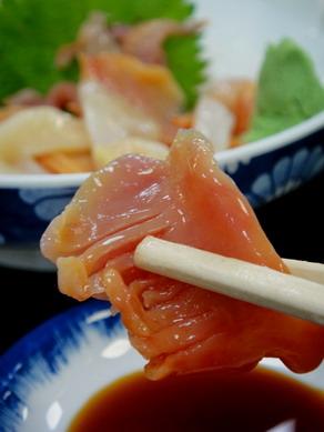 oogoshi20100702-006