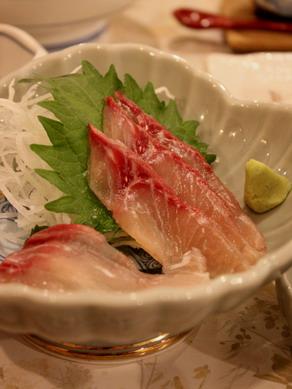 inakoyu20100122-003