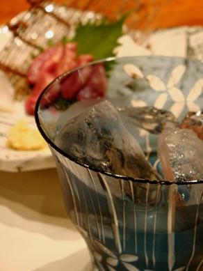 sakura20091001-010.JPG