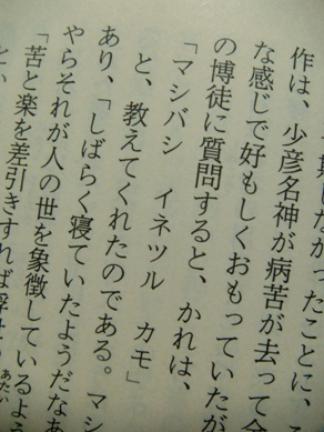 mashibashi20090131-002.JPG