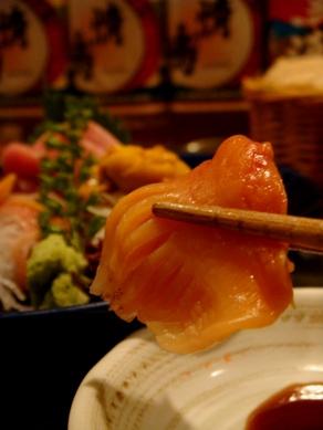 shinseimaru20091126-004.JPG