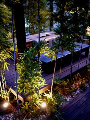 garden20110708-003.JPG
