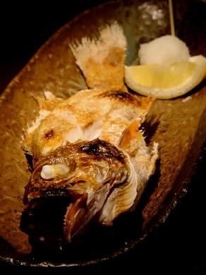 yakichi20091130-007.JPG