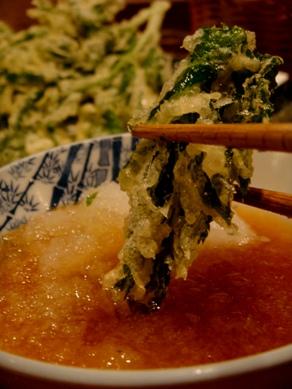 shinseimaru20091126-008.JPG