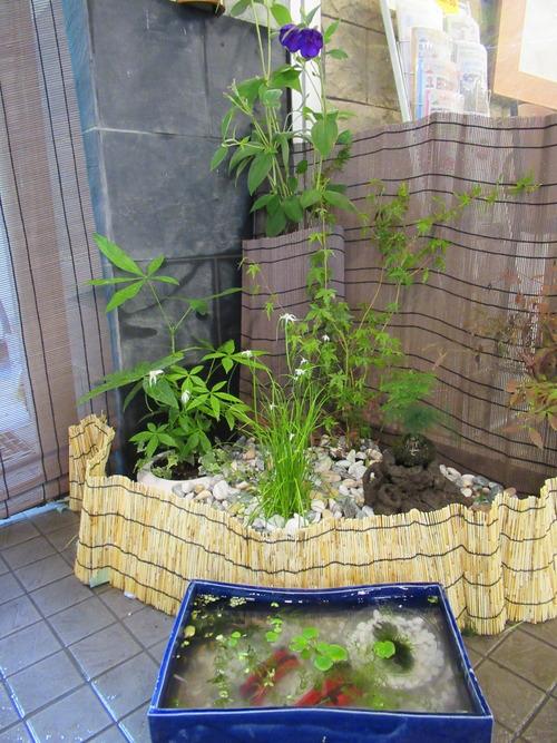 ミニ庭園1