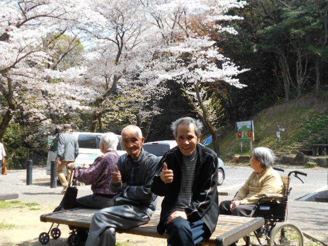 桜見物 103