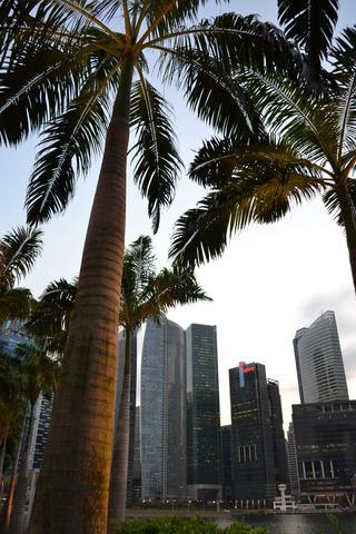 シンガポール 夕景