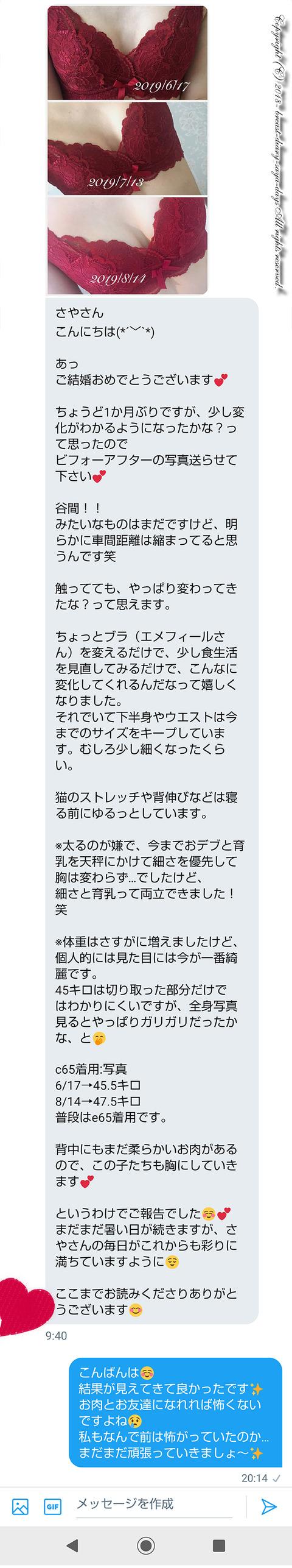 バストアップ_コンサル_201908_01
