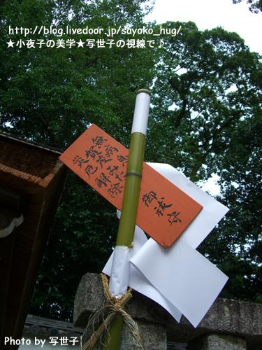 下賀茂神社のみたらし祭 2/3 (2009/07/20撮影)
