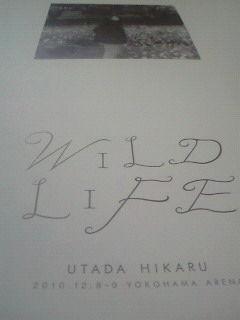 宇多田ヒカル:ライブのパンフ