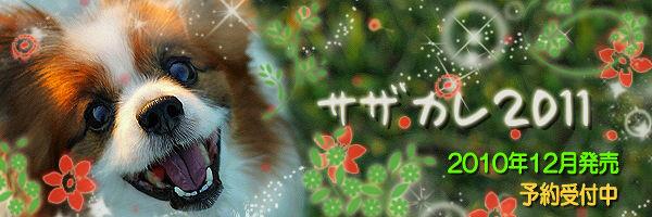 【サザカレ2011】 広告
